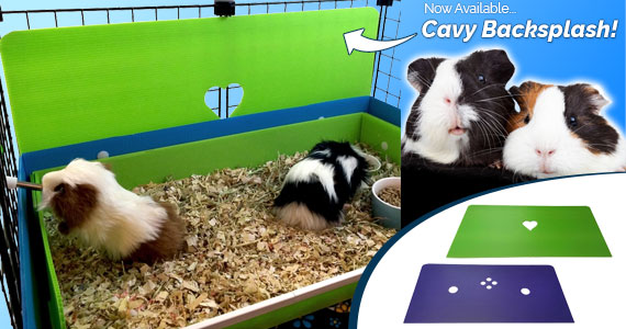 Now Available - Cavy Backsplash!