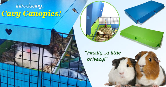 Introducing Cavy Canopies