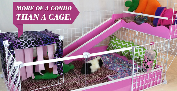 More of a Condo Than a Cage!