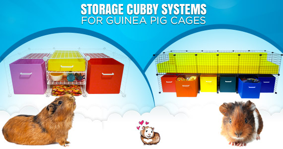 Storage Cubby Systems for Guinea Pig Cages
