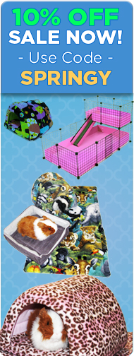Guinea Pig Cages Store Sale