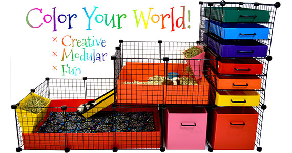 Color your Cage World