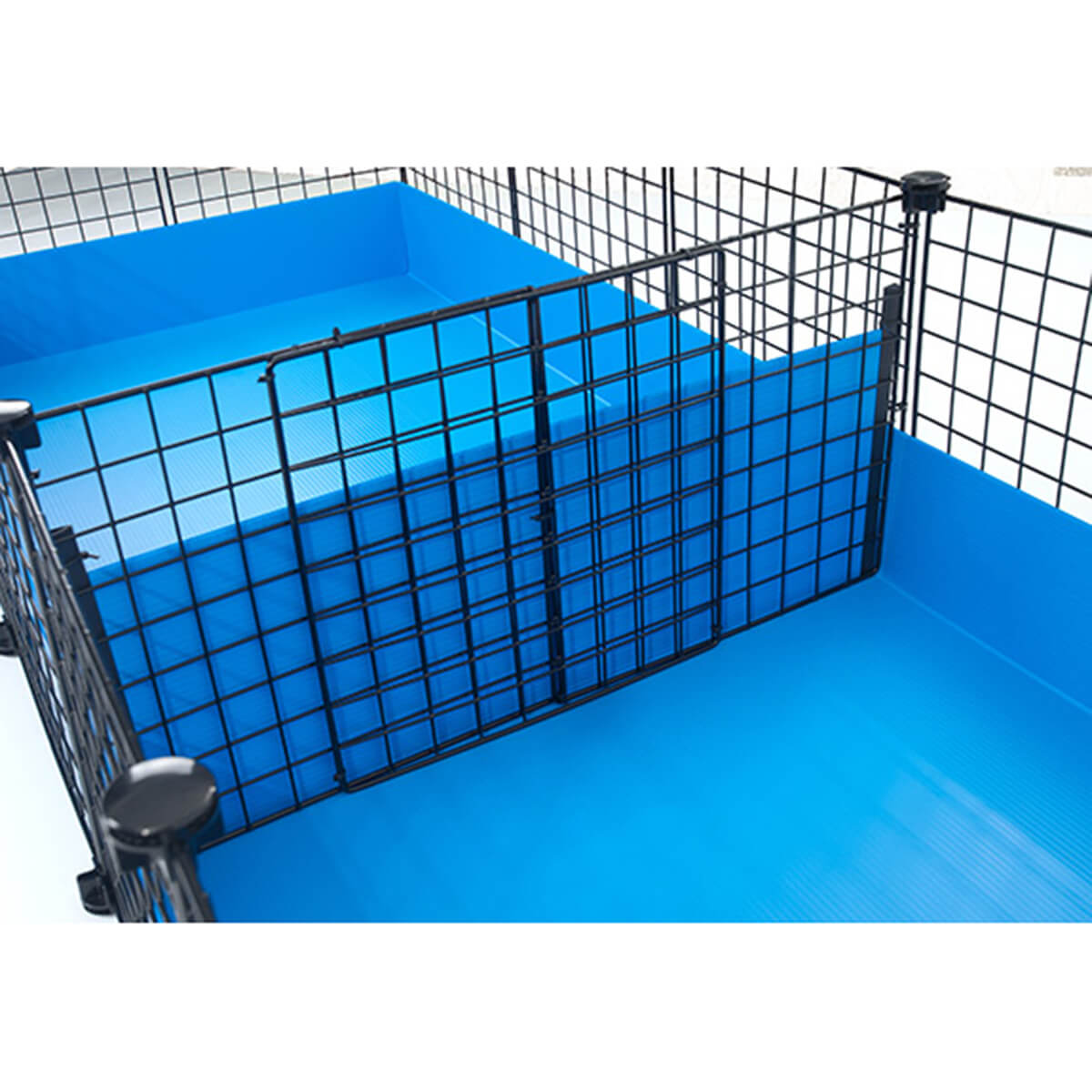 C c cage divider for guinea pigs wall of silence for Guinea pig cages for two