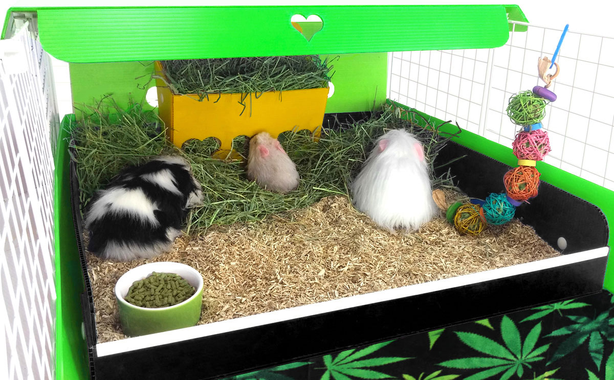 Hay Barns and Racks from Guinea Pig Cages Store