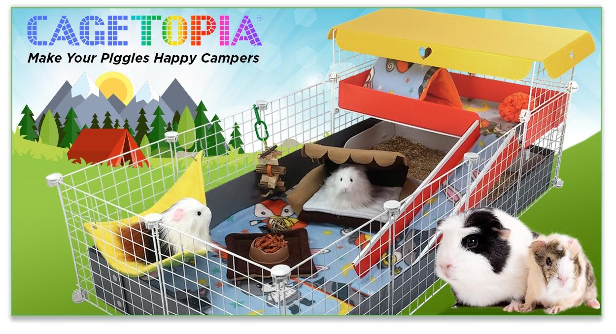 Happy Campers Cagetopia Theme Cage for Guinea Pigs - C&C