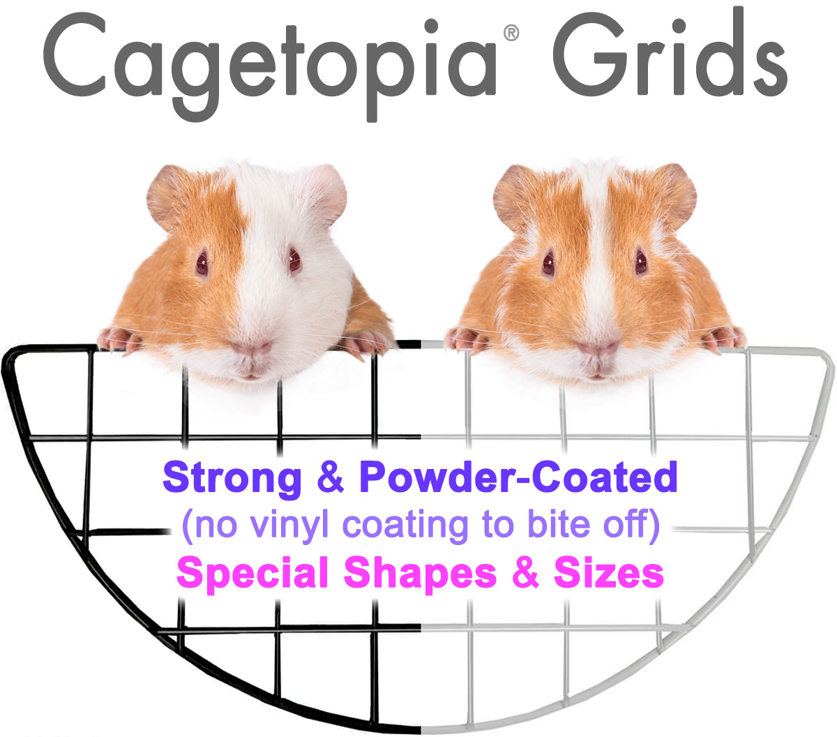 Cagetopia Grids for Guinea Pig C&C Cages