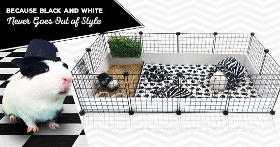 Because Black and White Never Goes Out of Style!