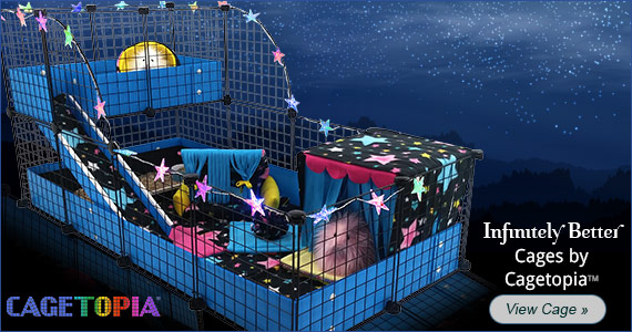 Starry Nights Cagetopia Configuration