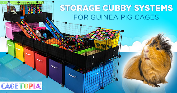 Cubby Storage Systems