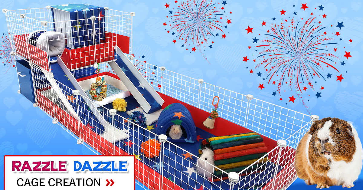 Razzle Dazzle Cage Creation