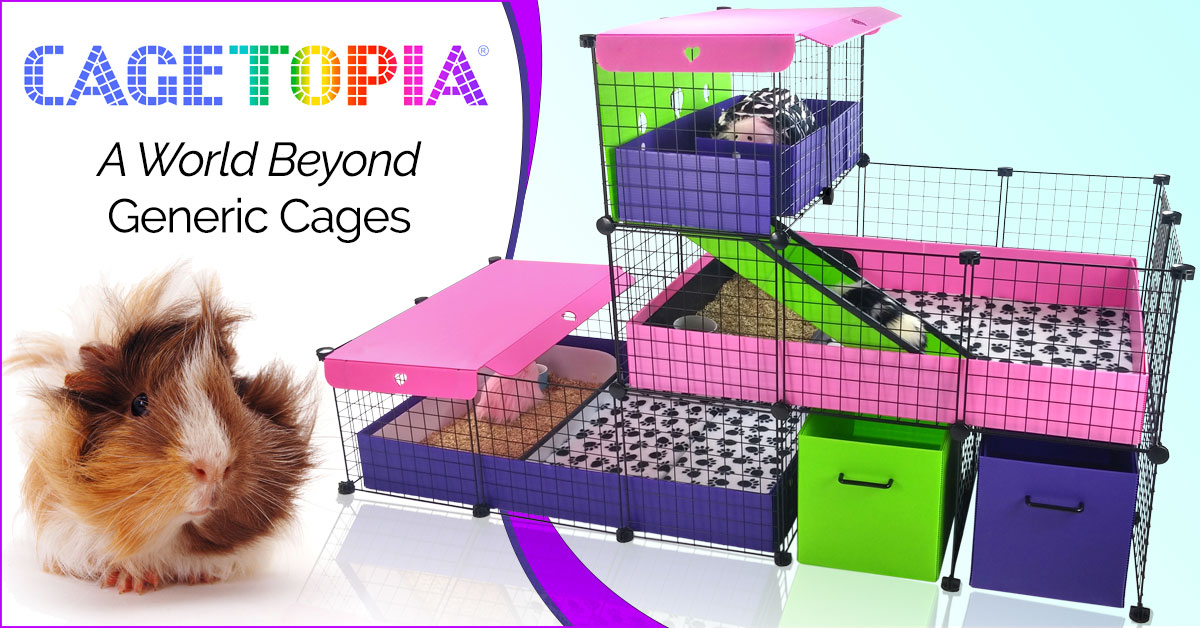 A World Beyond Generic Cages