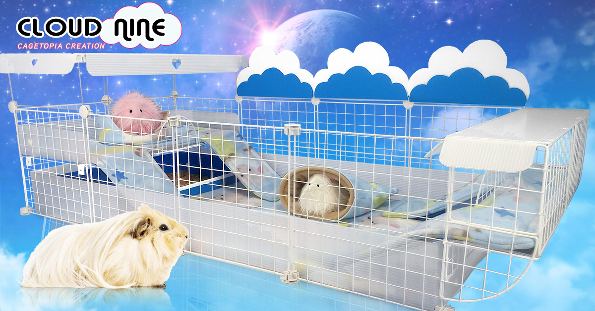 Guinea Pig Cages Store, Cagetopia C&C Guinea Pig Cages