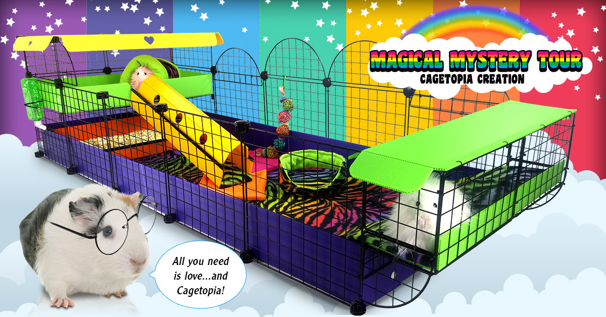 Magical Mystery Tour Cagetopia Creation