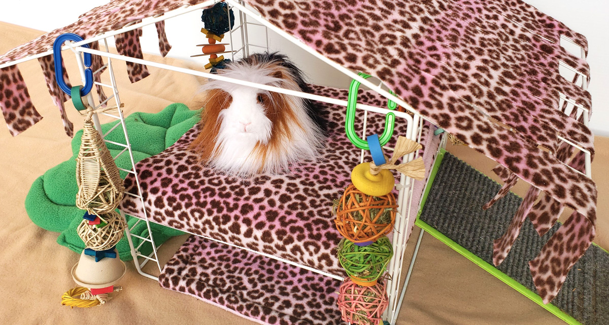 Guinea Pig Play Station in leopard fabric