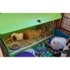 Cavy Canopy - KITCH-CANOPY