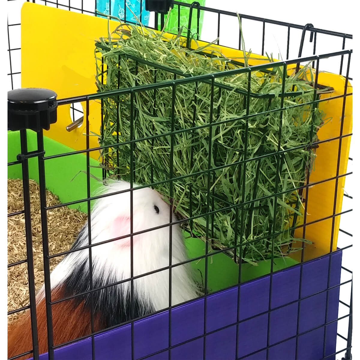 Large wire basket hay rack by Cagetopia, guinea pig safe