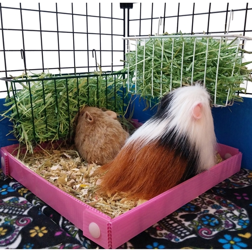 Small Hayrack for Guinea Pig Cages