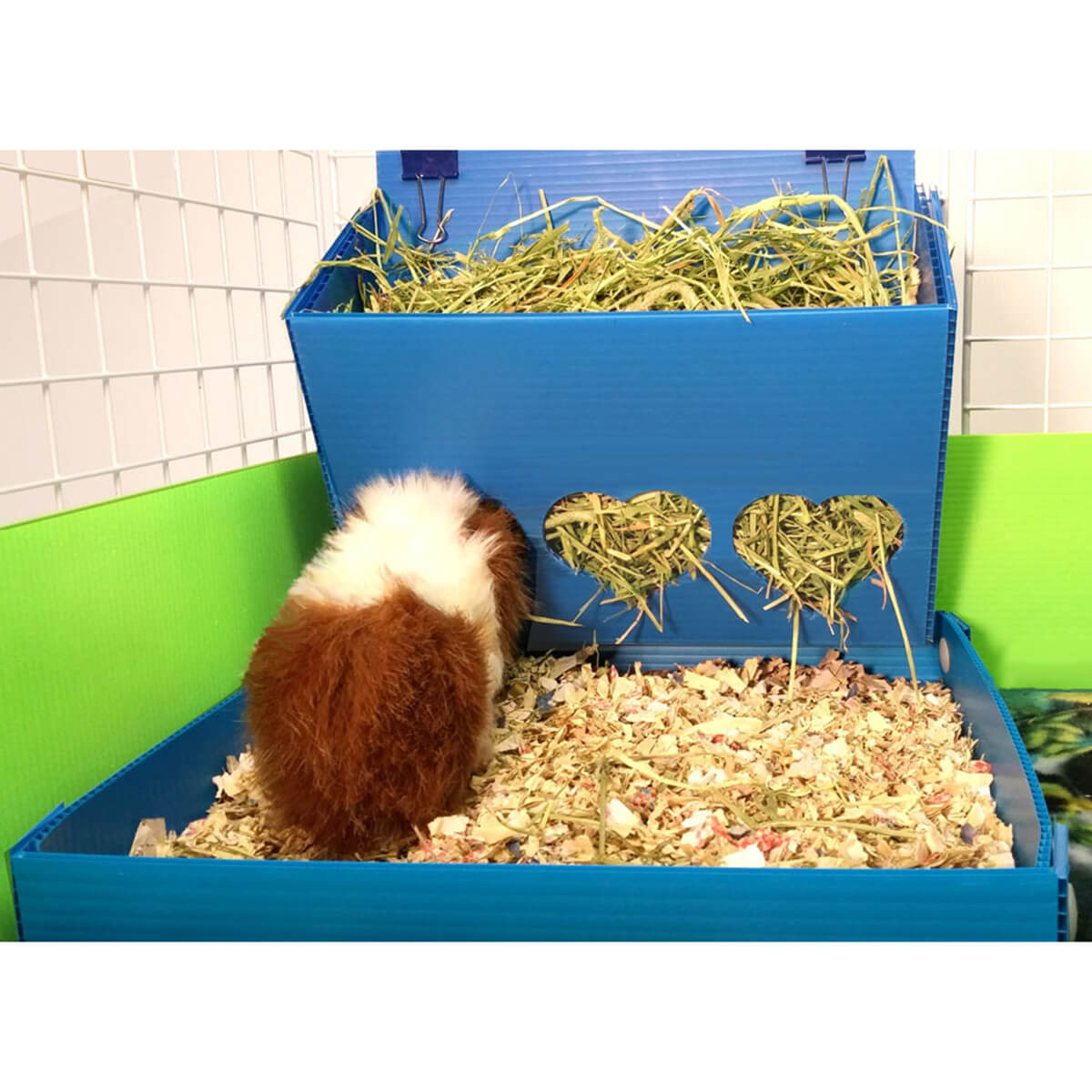 cages accessories hamster house item from big with cage pig guinea hedgehog home in feeder chinchilla capacity bed nest