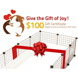Gift certificate for $100